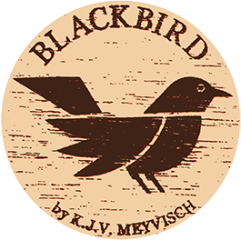logo Blackbird instruments